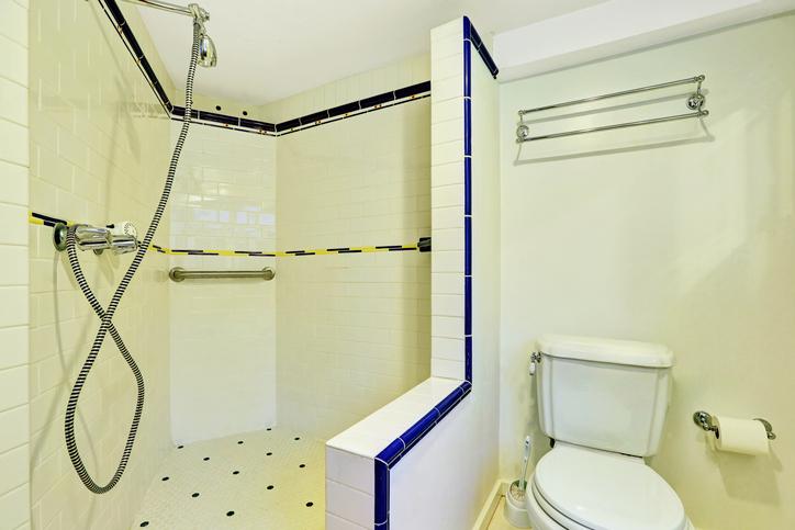 walk in shower & toilet
